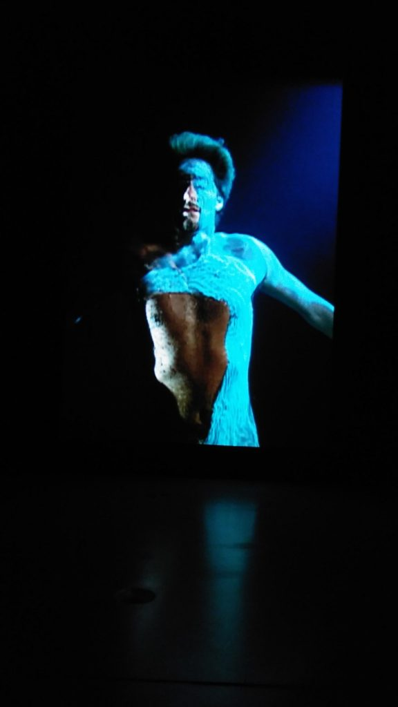 Bill Viola. The Messenger. Video-Ton-Installation 1996. Ph. Judith Behnk